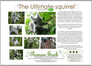 Knittedsquirrel