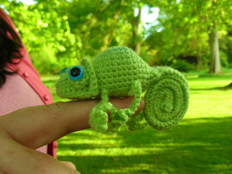 roman sock: Inspired again! Chameleons and Sharks!