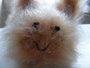 Bunny_face