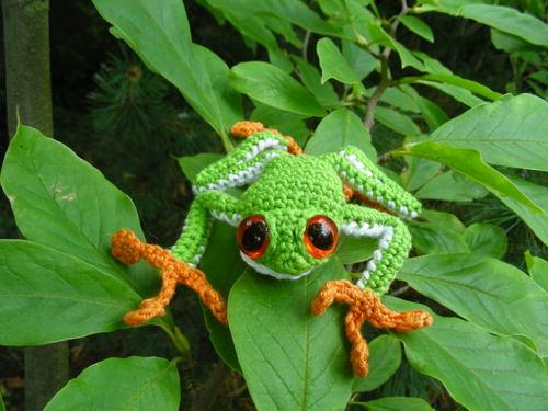 Totalfrog